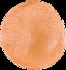 dot orange.png