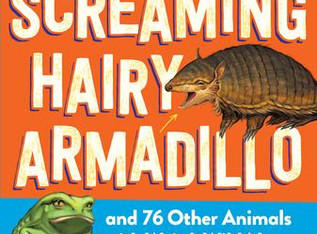 """""""The Screaming Hairy Armadillo,"""" 