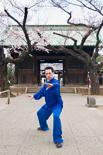 Taichi_2.jpg