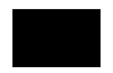 stephanie-david-logo.png