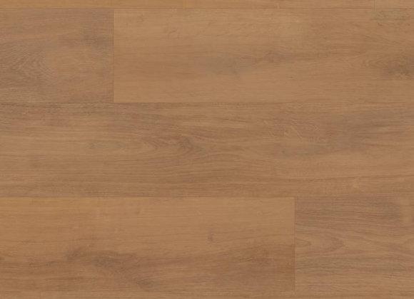 RKP8206 Barley Oak