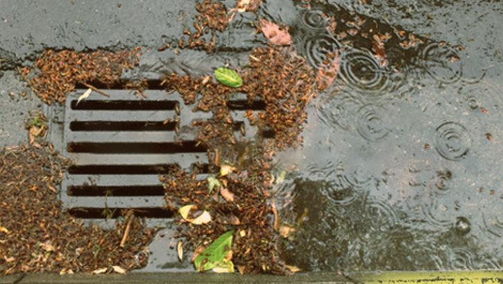clogged drain.jpg