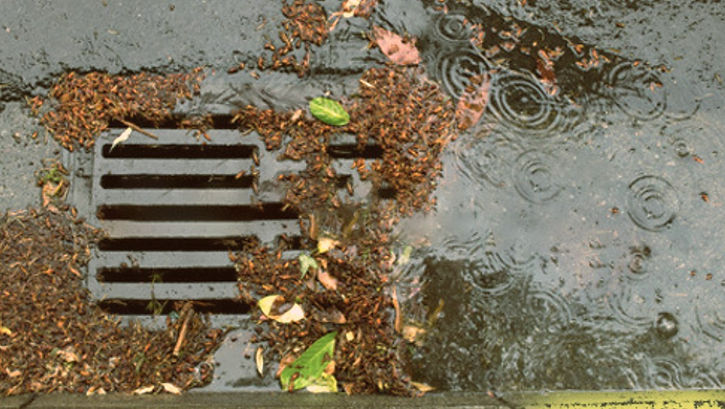 clogged parking lot drain