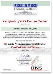 certificate_t.jpg