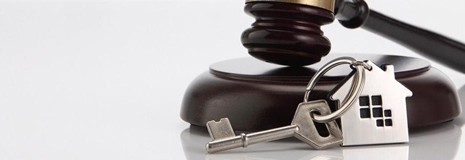 Staying-informed---Property-law_edited.jpg