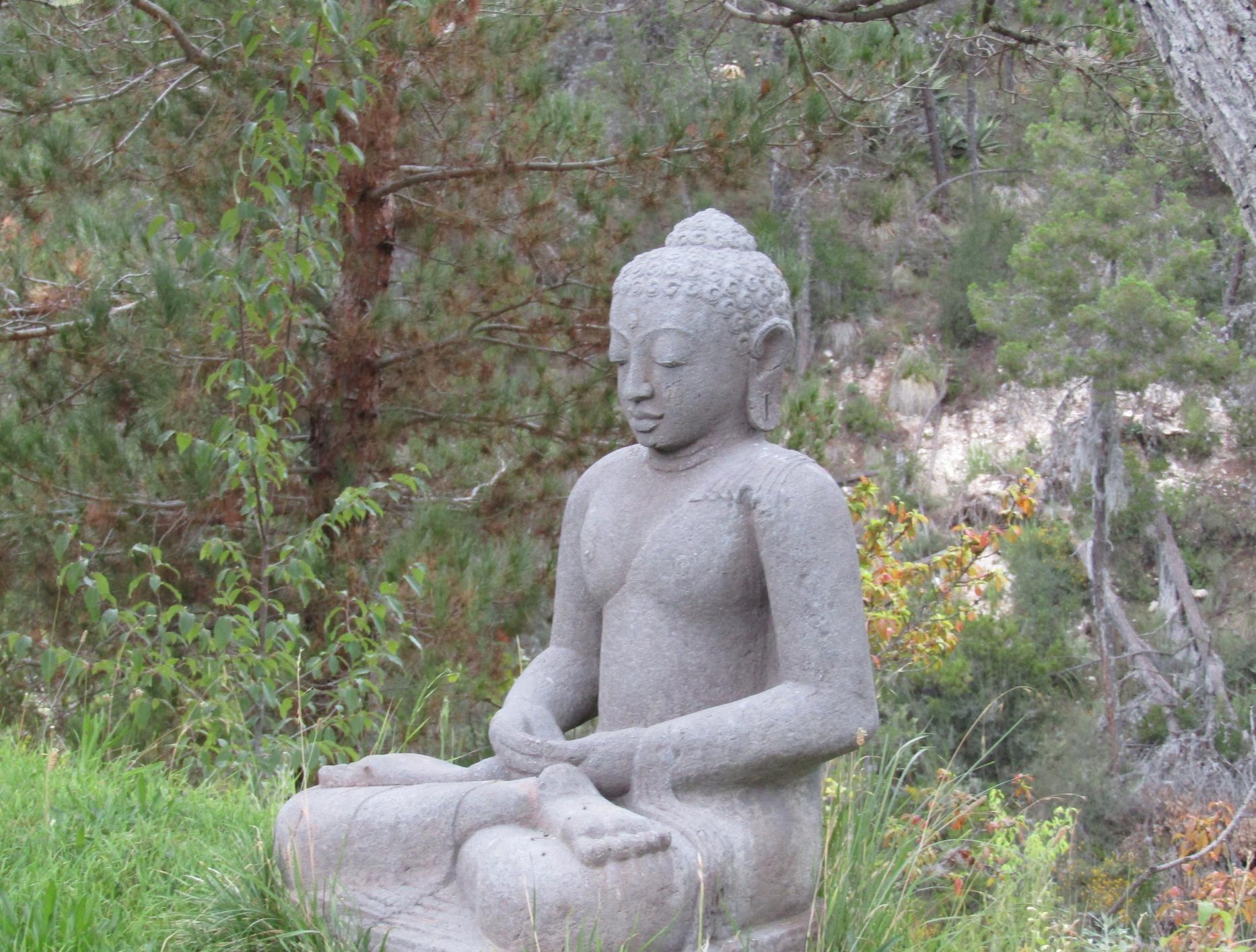 Buddha en el rancho