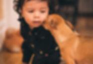 Canva-Dog-Looking-at-Toddler.jpg