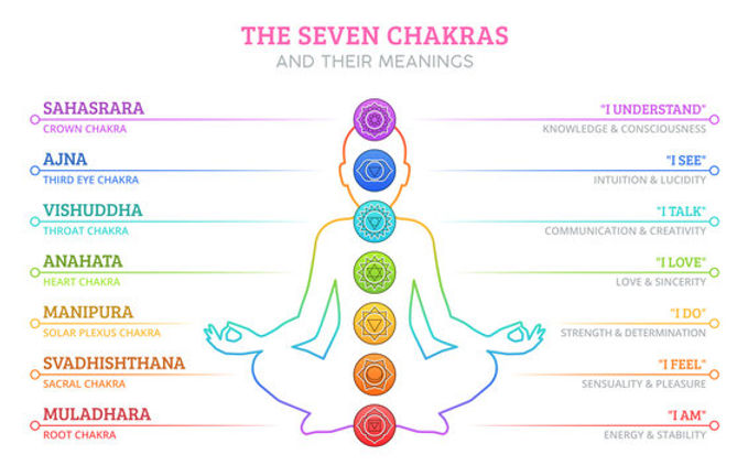 The seven chakras and their meanings.jpeg
