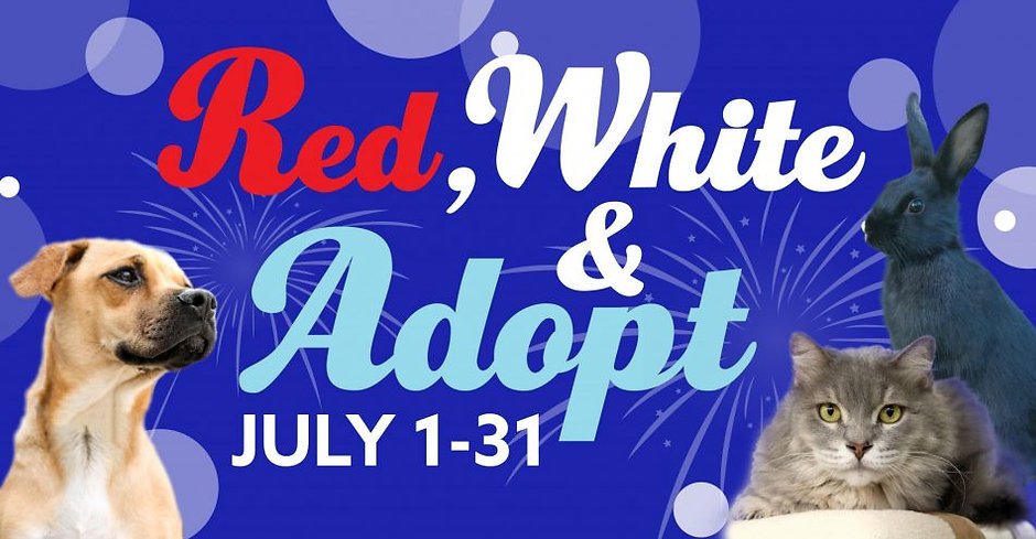 Red-White-Adopt-e1467224278119.jpg