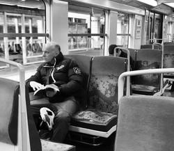 Soñar a traves de los libros