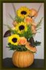 pumpkin sunflower.jpg