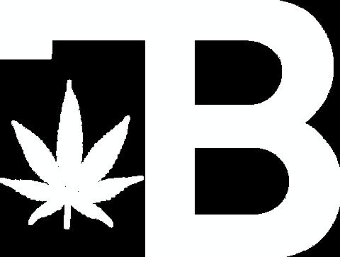 WHITE transparent bugatti logo.png