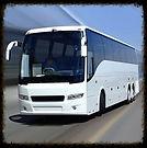 Bus Show Icon