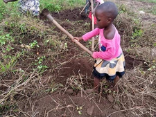 Uganda - garden