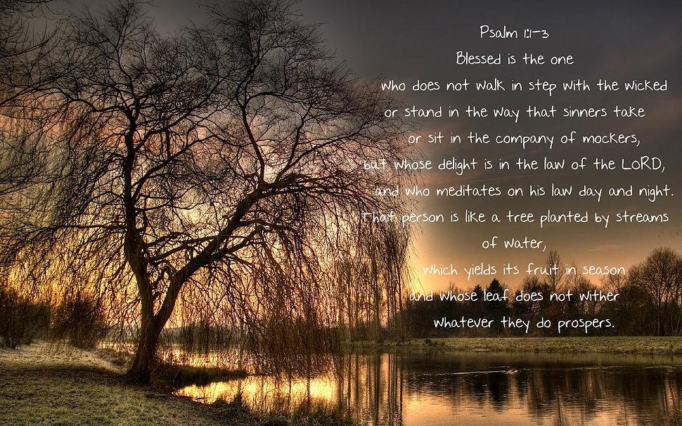 psalm1.jpg