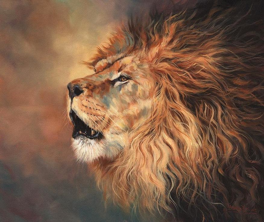 lion8_edited.jpg