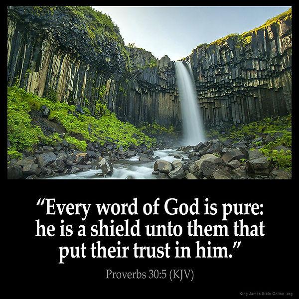 Proverbs_30-5.jpg