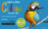 add a little colour - facebook.jpg