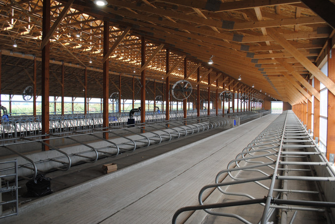 A view of the new barn
