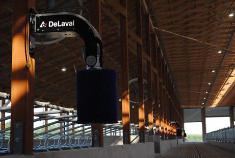 DeLaval Swinging Cow Brush SCB