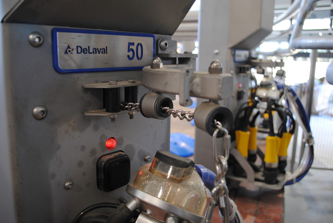 50 bails on the PR3100 Parallel Rotary Parlour