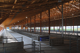 Opposite view of the new barn