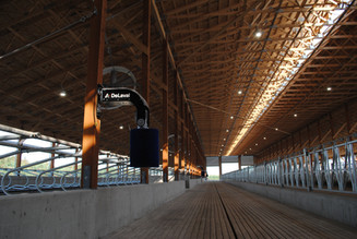 DeLaval Cow Brush in the alley