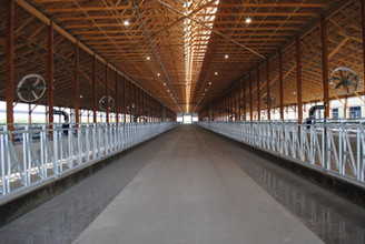 The feed alley