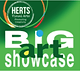 Herts-Visual-Arts-Big-Showcase-2019-Call