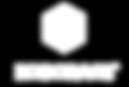 Roborace Logo.png
