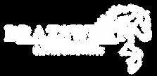 logo blanc BRAZSWEET - Fond transparent
