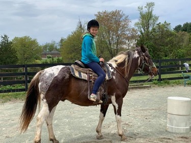 girl riding her horse for 4-h