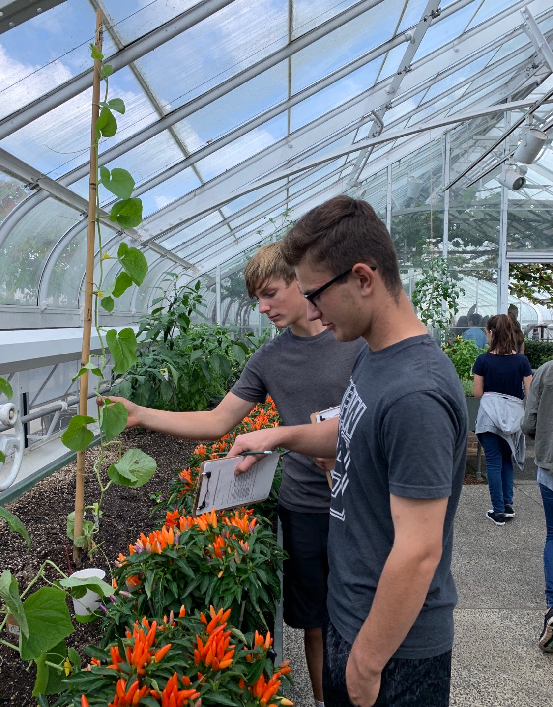 Learning about Botany on a Homeschool field trip to Longwood Gardens