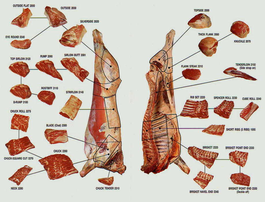 beef-carcass-dia.png