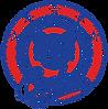 VES_5star_Logo-removebg-preview.png