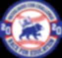 Race logo - 2020.png