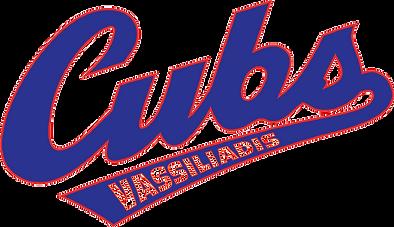 Vassiiadis_Logo_Version_6__1_-removebg-p