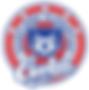 VES 5star Logo.png