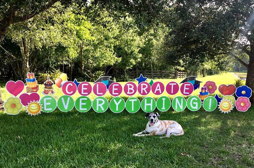 celebrate everything Skye.jpg