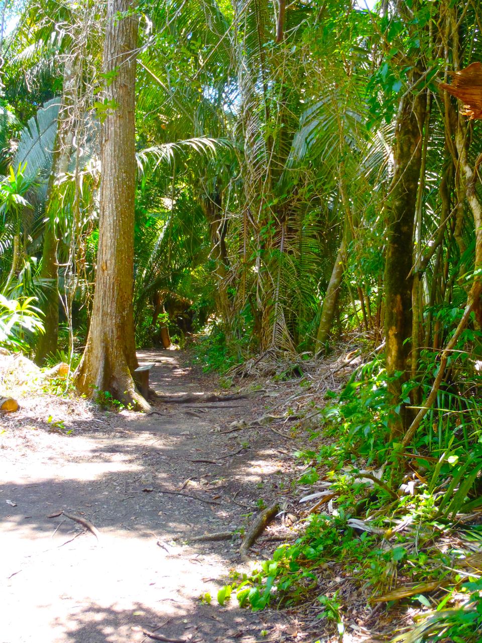Belize Mainland Tour Lamani Pictures - 50 of 64