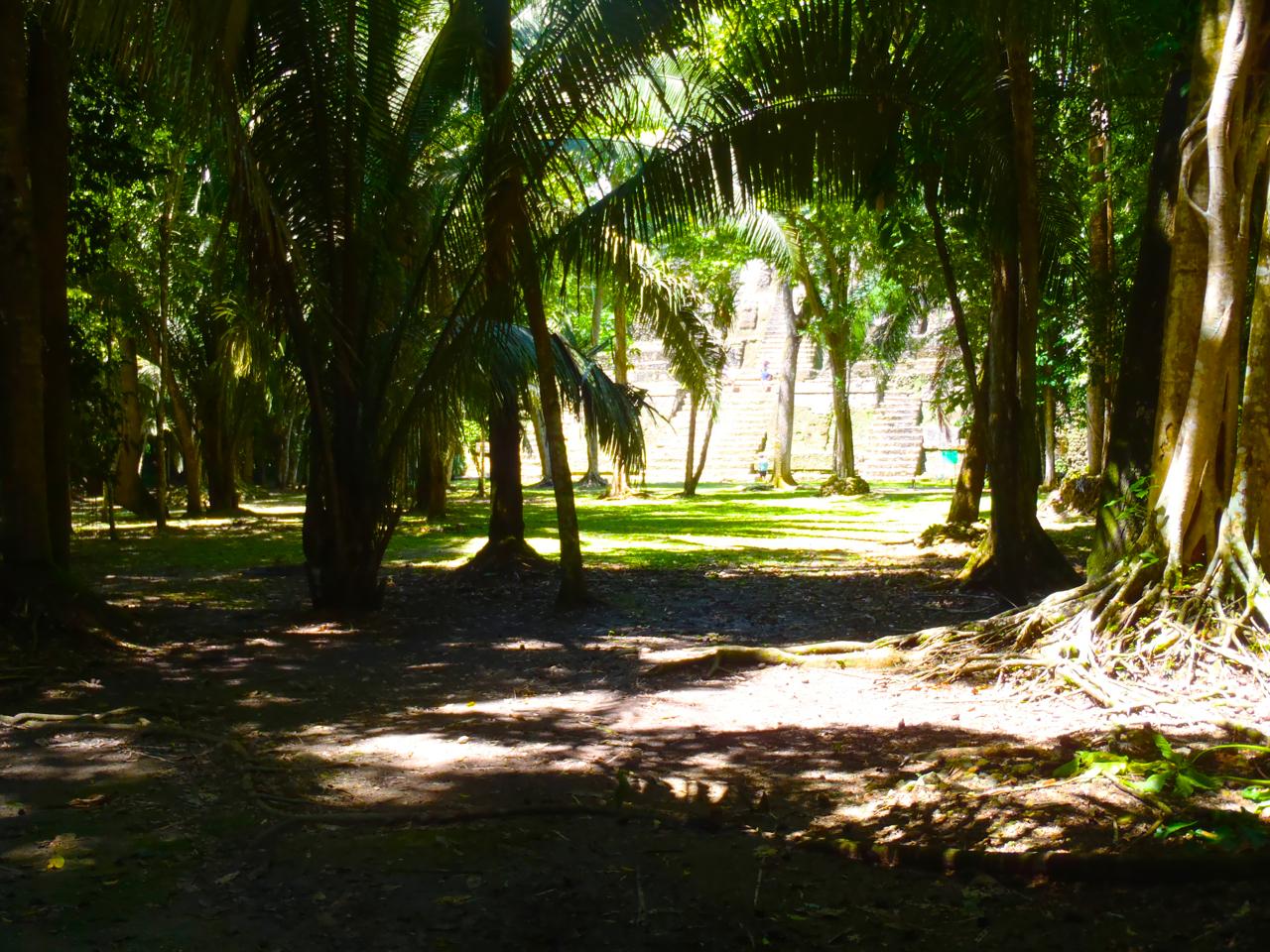Belize Mainland Tour Lamani Pictures - 15 of 64