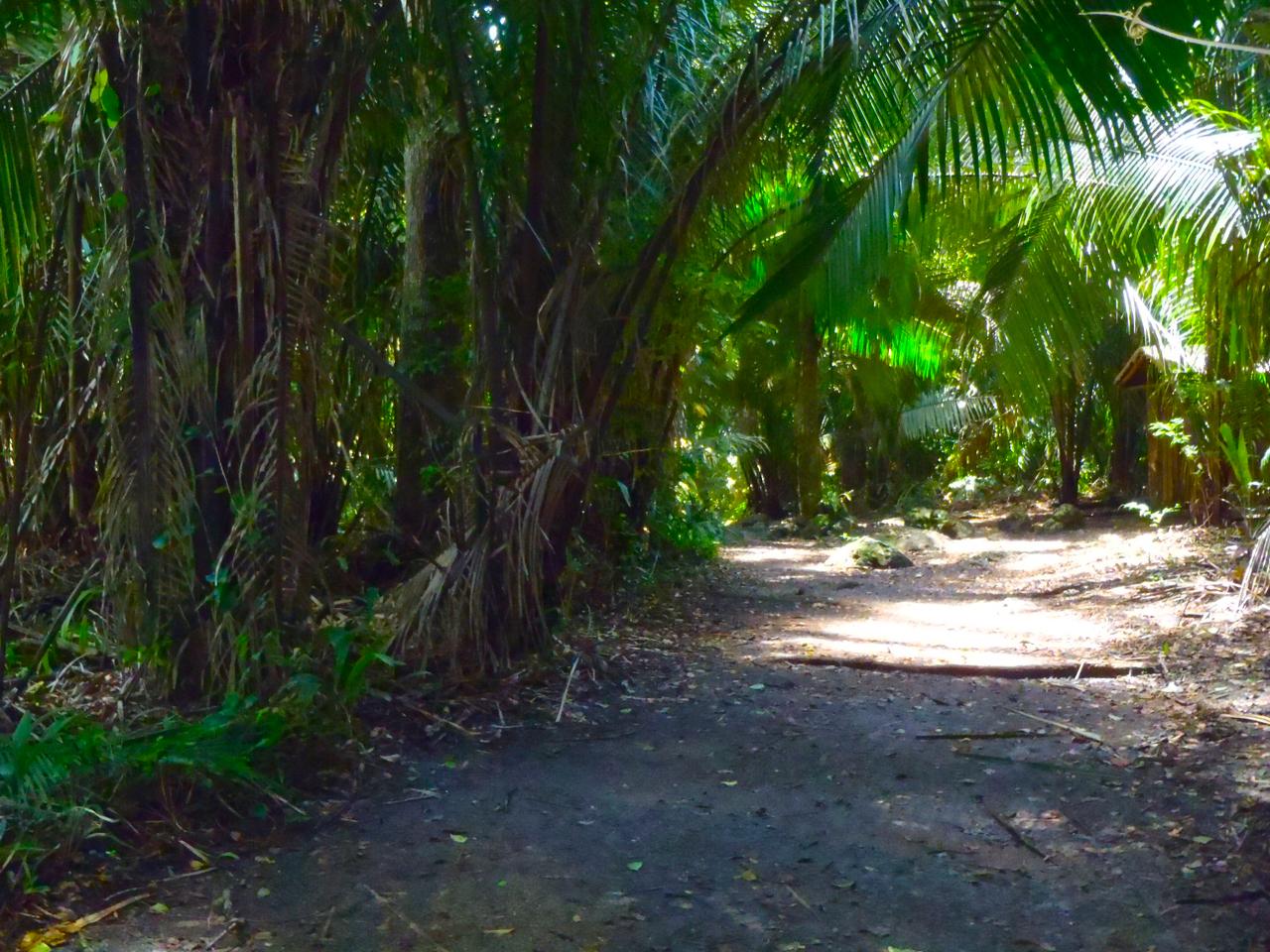 Belize Mainland Tour Lamani Pictures - 18 of 64