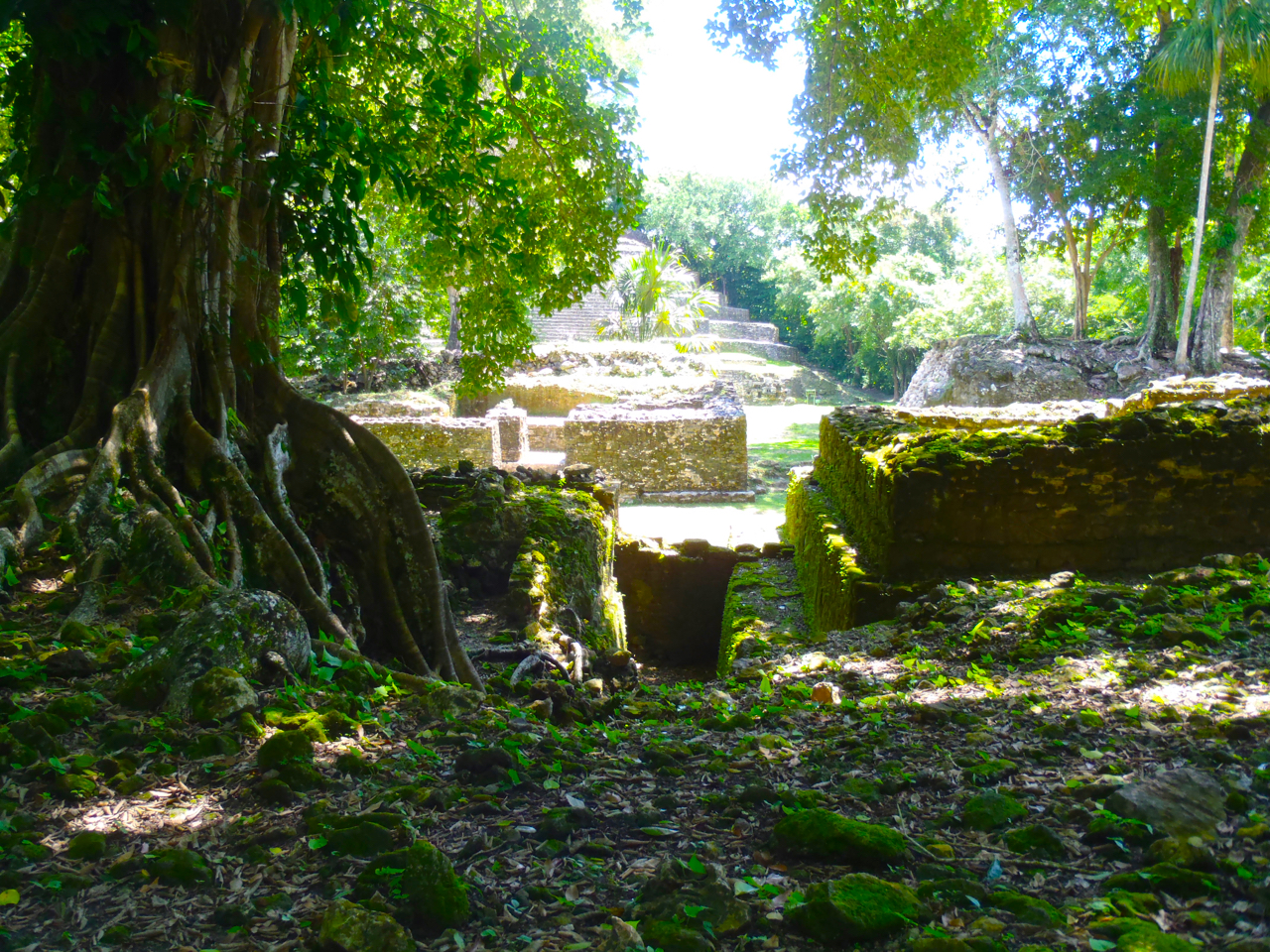 Belize Mainland Tour Lamani Pictures - 16 of 64