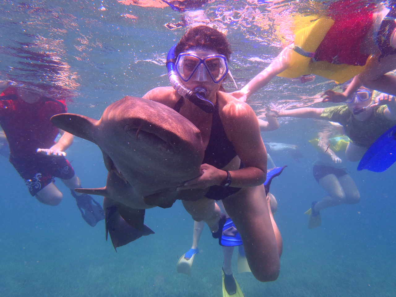 Photos of snorkeling and fishing in Belize shark Ray alley and Hol chan - 1 of 114
