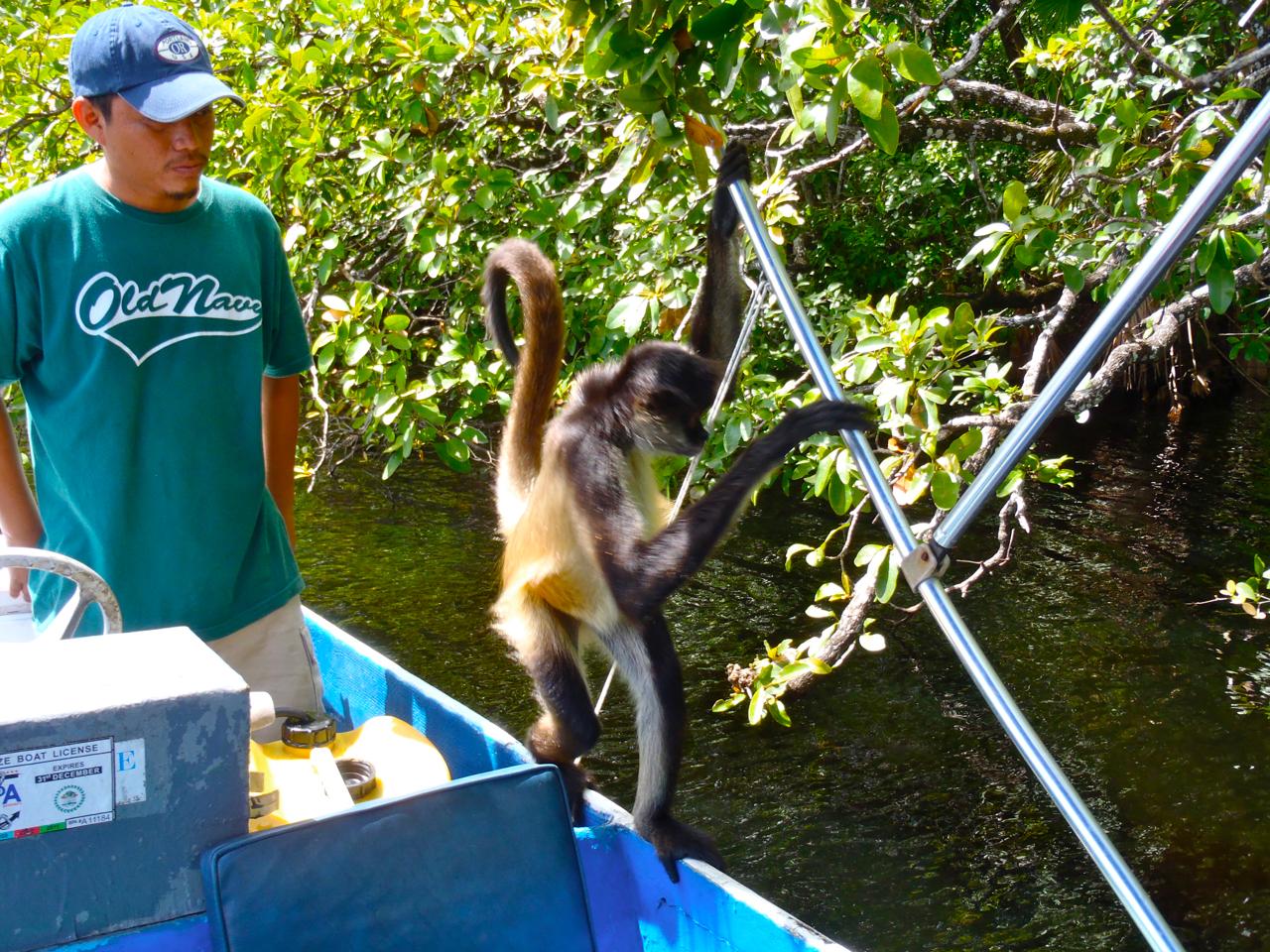 Belize Mainland Tour Lamani Pictures - 41 of 64