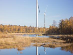 Mitä ympäristöverot oikeastaan ovat ja toimivatko ne?