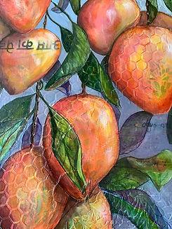 Mangoe detail