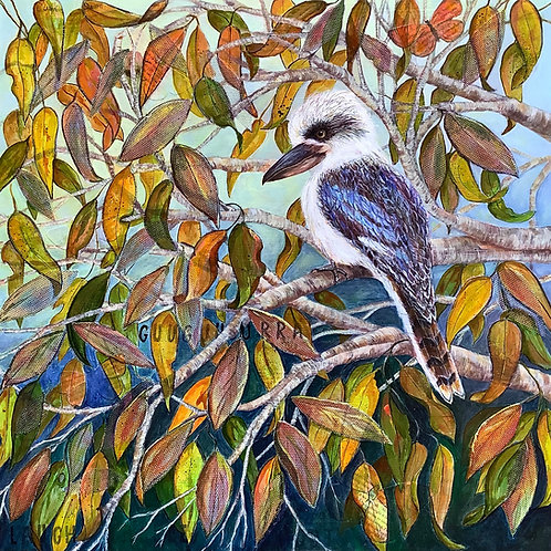 Kookaburra in a Gum Tree