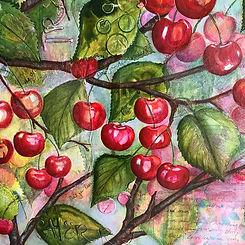 Cherry Detail