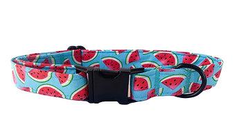 Watermelon Collar